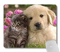 ゴールデンレトリバー子犬と子猫は庭で一緒に寄り添いますマウスパッドかわいい猫犬ペット動物のマウスパッドカスタム面白いデザイン