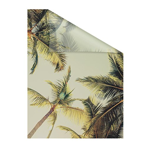 Lichtblick raamfolie zelfklevend, privacy, motief palmen en zon, groen