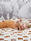 Covers & Co Beary Much Beary - Juego de cama (algodón orgánico, 140 x 200 cm y 1 x 70 x 90 cm), diseño de osos