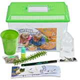 Nature Gift Store Frog Growing Kit:...