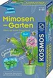 KOSMOS 657802 Mimosen-Garten, Pflanzen züchten und erforschen, Komplett-Set mit Mini-Gewächshaus, Experimentier-Set für Kinder ab 6 - 10 Jahre, Mitbringexperiment