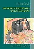 Histoire de deux petits chats alsaciens - La petite coccinelle OPHELIE le papillon BLEU