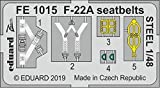 Eduard Photetch (EDPFE1015) - Maqueta de avión (zoom 1:48, F-22A)