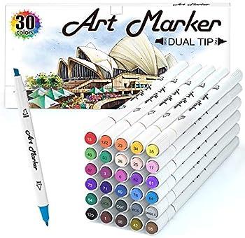 30-Count Lelix Dual Tip Permanent Marker Pens