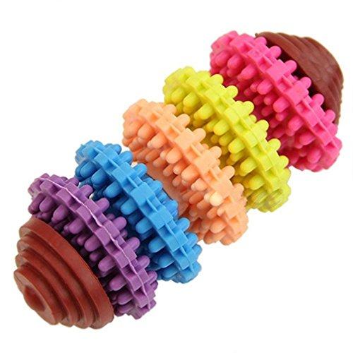 Alcyonée animaux chiens Puppy coloré en caoutchouc dentaire Dentition les gencives jouet à mâcher