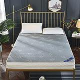 ZQWE Colchones, Colchón Ergonómico, Firme y Confortable Muy Transpirable, Invierno/Verano (Grey/2,10cm/100x200cm)