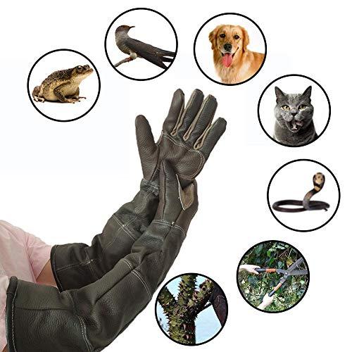 Jannyshop Anti-beißende Handschuhe für Katze und Hund Lederhandschuhe Anti-Biss/Kratzer Gardening Wildtiere Schutzhandschuhe