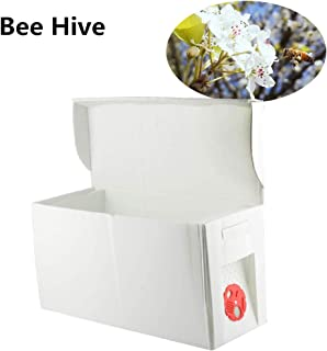 Best bee tool box Reviews