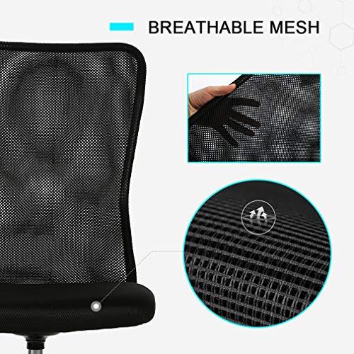 Vnewone Ergonomic Office Chair