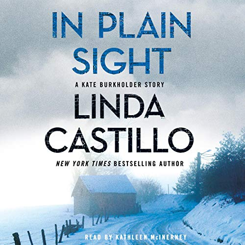 In Plain Sight: A Kate Burkholder Short Mystery
