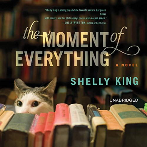 The Moment of Everything audiobook cover art