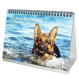 Hundezauber Große Hunde DIN A5 Tischkalender 2020 Welpen und Hunde Geschenk-Set: Zusätzlich 1 Gruß- und 1 Weihnachtskarte - Seelenzauber