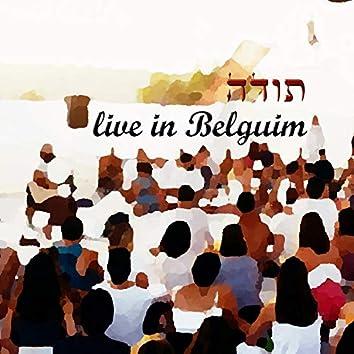 תודה הופעה חיה בבלגיה 2019