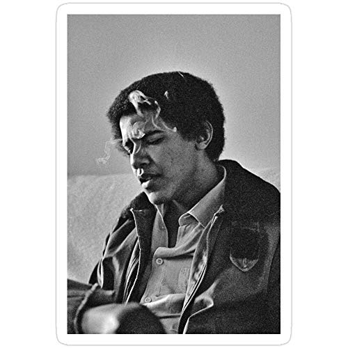 Lplpol Young Barack Obama Aufkleber für Wasserflasche, Computer, Wand, Skateboard, Motorrad, 10,2 cm, 3 Stück