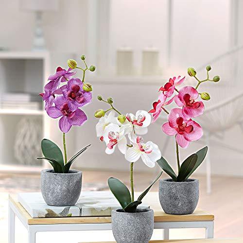 3x Orchideen künstlich | Kunstpflanze Phalaenopsis | 3er-Set | Weiß hellrosa dunkelrosa | Deko | Höhe 38 cm