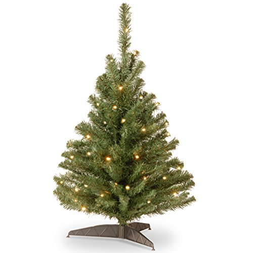 National Tree Company Pre-lit Artificial Mini Christmas Tree | Includes Pre-strung White Lights and Stand | Kincaid Spruce - 3 ft