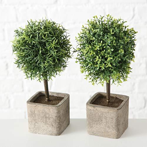 mucplants 2er Set Künstliche Topfpflanze im Zementtopf 27cm Kunstpflanzen Kunstblumen Bux