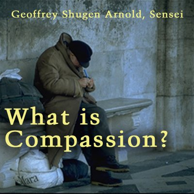 What Is Compassion? audiobook cover art