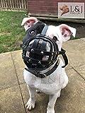 Bozal para perro de cuero real claro para Staffordshire Bull Terrier Staffy, Staffie (negro, S2)