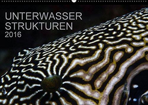 Unterwasser Strukuren (Wandkalender 2016 DIN A2 quer): Ein Kalender für Taucher und Designer (Monatskalender, 14 Seiten ) (CALVENDO Natur)