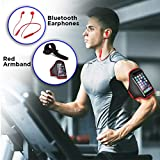 i-Tronixs 2 in 1 FITNESS SPORTS PACK RED with Running