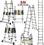 Lichire 5m Teleskopleiter
