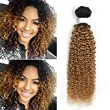 Brazilian Virgin Human Hair one Bundle Jerry Curly Remy Hair Extensions Kinky Curly Hair Bundles T1b/27 Ombre Hair Bundles Weave (26 Inch)