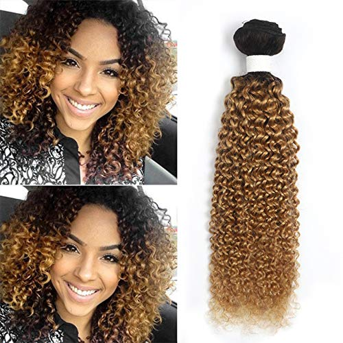 KEMY Kinky Curly Human Hair Extensions Jerry Curly Bundles Brazilian Curly Hair One Bundle 2 Tone Ombre Curly Weave 1B/27 Blond Color (22 Inch)