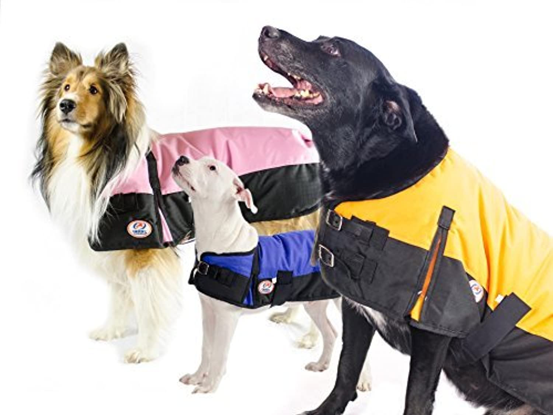 Derby Originals 600D Medium Weight Waterproof Breathable Insulated Dog Coat, XLarge, bluee by Derby Originals