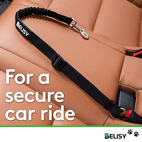 BELISY Hunde-Sicherheits-Gurt fürs Auto - 4