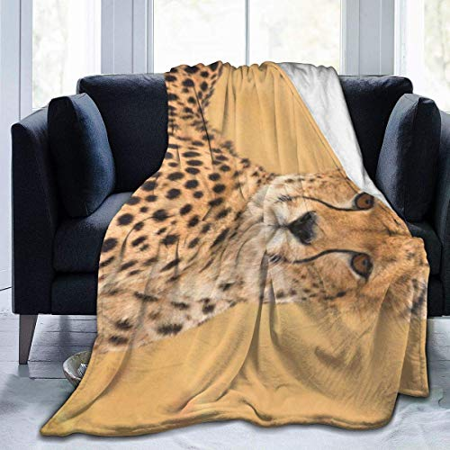 Meloci Wildlife African Male Cheetah In Masai Mara Kenia Micro Fleece Throw Blanket Ultra-Soft Throws Für Winter Bettwäsche Couch Sofa