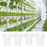Neel Taza de la Cesta hidropónica, cestas hidropónicas de Material PP, Planta de siembra sin Suelo Cesta hidropónica para el jardín de la Planta del balcón