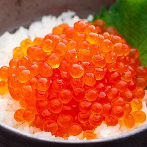 OWARI いくら 醤油漬け 冷凍 北海道産 小分け 1.5kg(100gx15P)