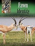 Fawn Identity