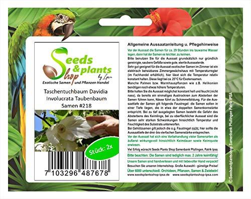 Stk - 2x Taschentuchbaum Davidia Involucrata Pflanzen - Samen #218 - Seeds Plants Shop Samenbank Pfullingen Patrik Ipsa
