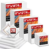 20 Packs Stretched Canvases with Multi Pack 4x4