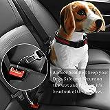 Aodoor Auto Hunde Sicherheitsgurt Hundegurt Sicherheitsgeschirr Hunde Adapter Autosicherheitsgurt Schwarz 18-27.5in 2 pack - 2