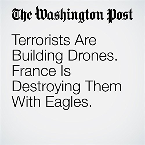 Terrorists Are Building Drones. France Is Destroying Them With Eagles. copertina