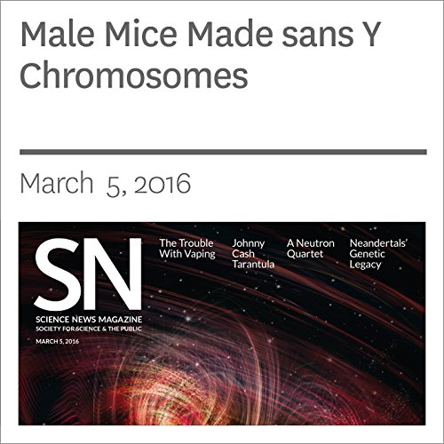 Male Mice Made sans Y Chromosomes cover art