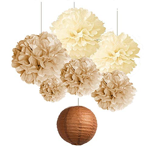 SUNBEAUTY Paper Honeycomb Ball Pom Poms Flowers Paper Rosace Fan Room Wedding Anniversary Birthday Party Backdrop Decoration 20 Pieces Multi Color