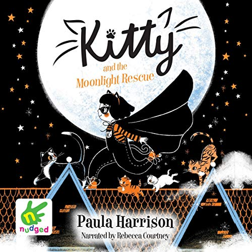 Kitty and the Moonlight Rescue audiobook cover art