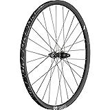 DT Swiss WHDTXRC122502R - Pieza para Bicicleta (29 x 25 mm, Parte Trasera)