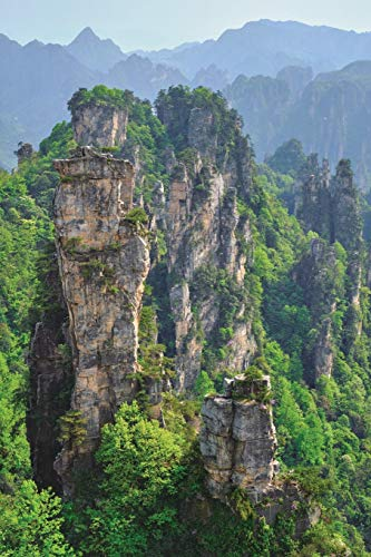 Notebear: Zhangjiajie Mountains, China Journal (Travel Notebook & Diary with Alternate Blank & Lined Pages, Band 277)