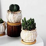 JHVD Cerámica Suculenta macetas de macetas con Drenaje y bandejas Pantalla para decoración del hogar Patrón de Punto de mármol único Macetas