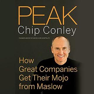 Peak audiobook cover art
