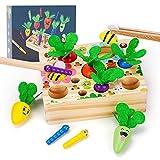 2 3 4 Jahre Baby Spielzeug,Holzspielzeug Montessori Spielzeug ab 1 2 3 Jahre Kinder,Geburtstag Junge Spielzeug 1-5 Jahre Mädchen Spielzeug Babys Lernspielzeug Sortier Angelspiel Geburtstagsgeschenk