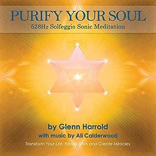528hz Solfeggio Meditation audiobook cover art