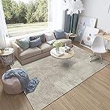 Alfombra de Diseñador Combinación de Colores Para Sala de Estar - Alfombra de Dormitorio Diseño Exquisito Calidad Creativa Elegante Color Degradado Arte Transpirable Corto Terciopelo-160 X 230 Cm