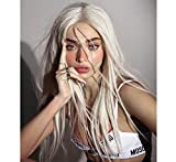 LANOVA Silver Blonde Wigs for Women White Blonde Synthetic Blonde Lace Front Wigs Straight Long Wig 22 inch LANOVA-061