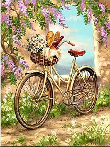 DIY Pintura por Números Bicicleta de árbol de flores Pintar por número de kit for Adultos Mayores Avanzada Niños Joven 40x50cm Sin Marco